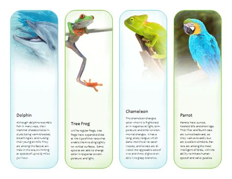Bookmarks (tropical animals) Template - Microsoft Publisher - blank bookmark template