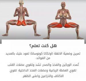 وضعيات رياضية مفيدة للجسم شي من كل شي Full Body Gym Workout Yoga Information Gym Workout For Beginners