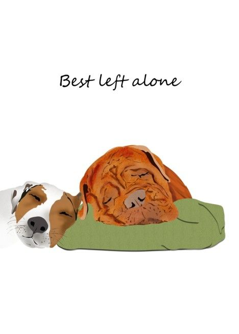 Let Sleeping Dogs Lie Idiom Two Dogs Asleep Friendship Card