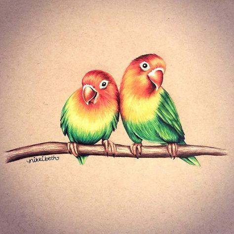 Love Bird Painting Colored Pencils 49 Ideas For 2019 Pintura De Pajaros Dibujos De Animales Dibujos