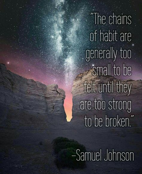 Top quotes by Samuel Johnson-https://s-media-cache-ak0.pinimg.com/474x/1a/35/b9/1a35b941db2ce155d3b28ad130eed687.jpg