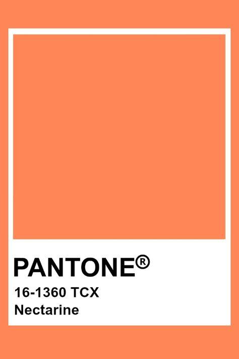 Pantone Nectarine