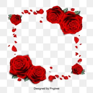 Romantic Chinese Valentines Day Red Rose Petals Background Design Valentines Day Border Red Roses Valentines Day Background