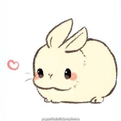 Animal Drawings White Rabbit Baby Animal Drawings Cute Easy