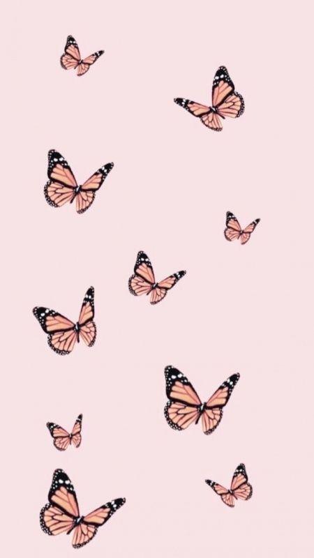 Vsco Teenager Butterfly Wallpaper Iphone Backgrounds Phone Wallpapers Wallpaper Iphone Cute