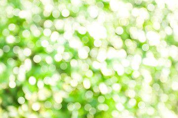 Blurred Green Natural Bokeh With Sun Light Background Affiliate Natural Green Blurred Bokeh Background Ad In 2020 Lights Background Bokeh Background