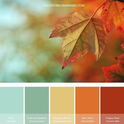 Ten Fall Color Combinations gathered by CountyRoad407.com  #fallcolor  #fallideas  #fallcolorideas  #falldecor