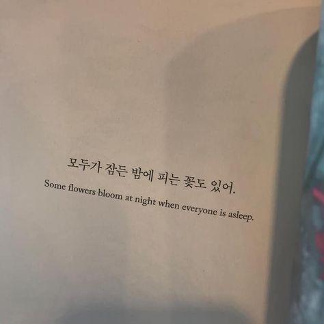Sohee Studies - Korean Langblr