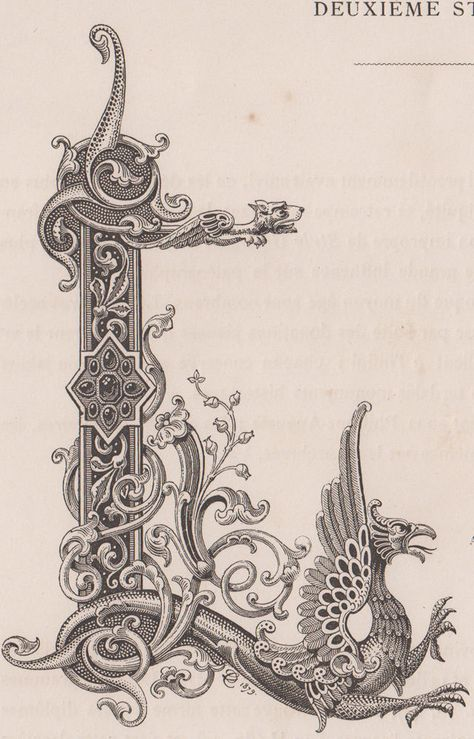 Details on Monogram, digits, letter L with engraving dragon from 1882 - mandabri letters Fancy Letters, Monogram Letters, Alphabet Art, Letter Art, Illuminated Letters, Illuminated Manuscript, Ornament Drawing, Tattoo Lettering Fonts, Illumination Art