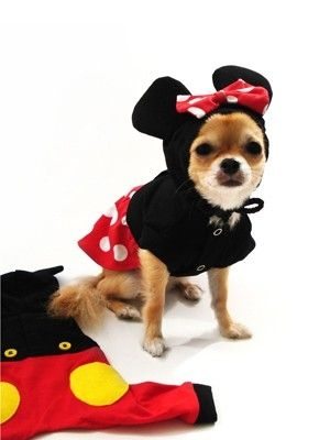 Minnie Mouse By Vtheodoraki Dog Halloween Costumes Pet Costumes
