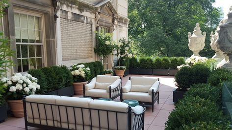 Terrace Sample Boxwood Hydrangea Planters By Greening Stone With