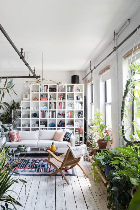 Wow! Ein tolles Kasten-Bücherregal im Wohnzimmer und diese Pflanzen erst..
