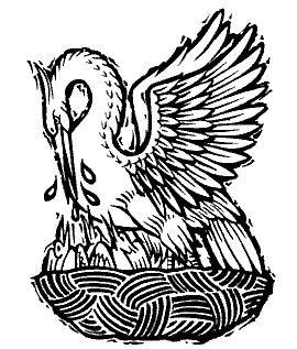 Los Simbolos Y Su Significado El Pelicano Simbolo Y Significado Arte Pelicano Simbolos Y Significados Simbolos Cristianos