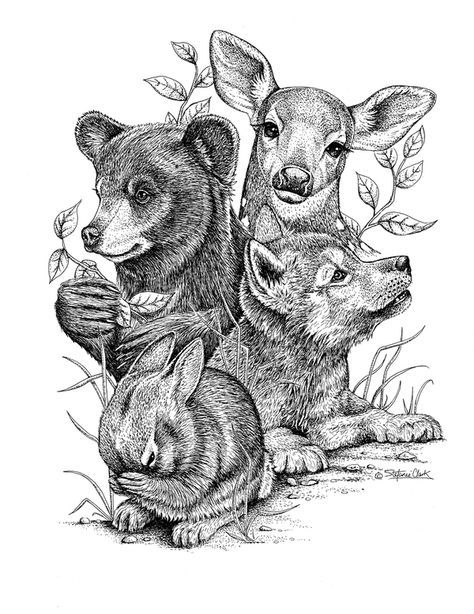 coloring for adults - baby animals deer bear rabbit bunny wolf cub