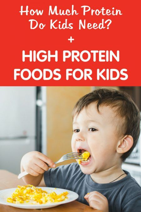 toddler need high protein diet