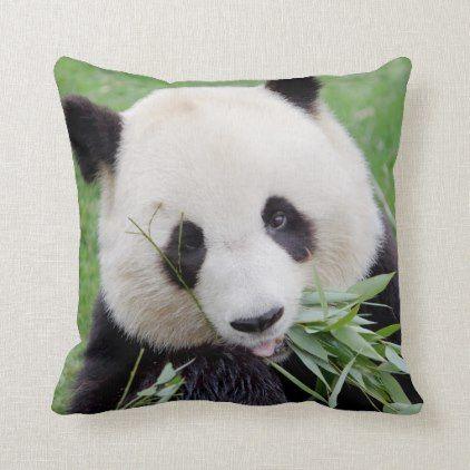 Photo Giant Panda Animals 0403 Throw Pillow Zazzle Com Panda Giant Panda Animals