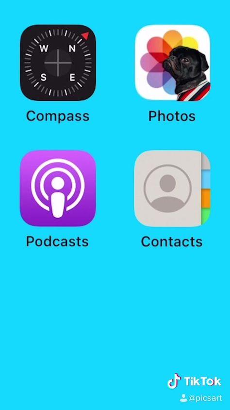 iOS 14 🤝 Pet Parents 🤝 PicsArt