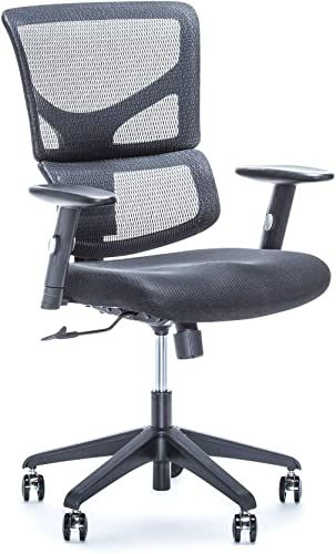 Shop For X Chair Executive Office Desk Task Chair X Basic Black Ergonomic Lumbar Support Heavy Duty Rolling Wheels Breathable Mesh Cushion Adjustable Arm In 2020 Task Chair Chair Lumbar Support