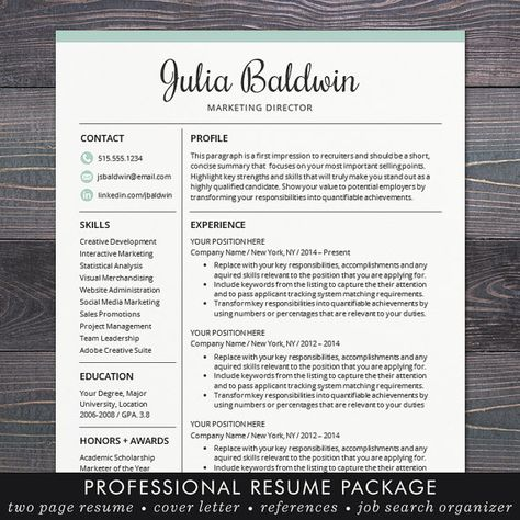 Professional CV Template Interview-winning professional CV - profile writing