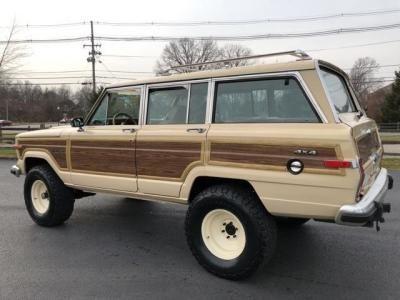 1989 Jeep Grand Wagoneer For Sale In Louisville Kentucky