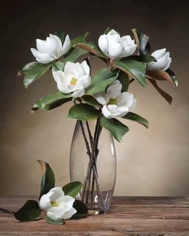 Small Bloom Magnolia Silk Flower Stems At Petals Oil Painting Flowers Flower Vases Beautiful Flowers