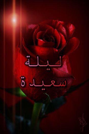 صور ليلة سعيدة رائعة Beautiful Rose Flowers Beautiful Roses Flowers