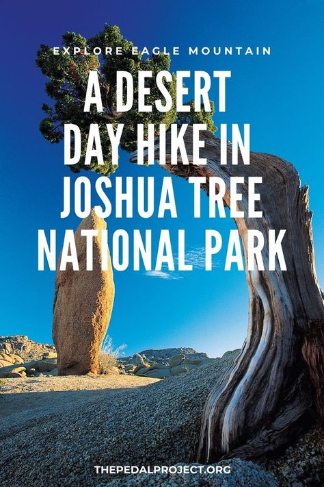 Desert Day Hike in Joshua Tree National Park | The Pedal Project