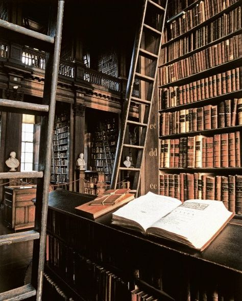 Bibliothek des Trinity College in Dublin: Der französische Fotograf Guillaume.: Library of Trinity Beautiful Library, Dream Library, Library Books, Paradis Sombre, College Library, Hogwarts Library, Home Libraries, Book Aesthetic, French Photographers