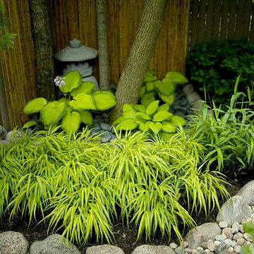 Add Textural Contrast Shaded Sections Of The Japanese Garden Rely On Subtle  Color Contrast And Bold