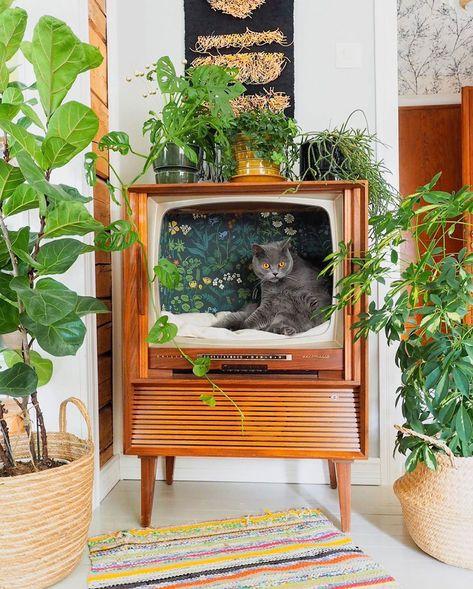 Cool Cat Beds, Cool Cats, Vintage Tv, Looks Vintage, Cat Furniture, Vintage Furniture, Painted Furniture, Fancy Bed, Flea Market Decorating