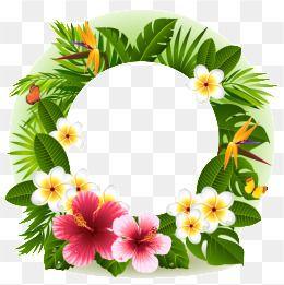 Flores Png Images Vetores E Arquivos Psd Download Gratis Em Pngtree Art Drawings Simple Flower Png Images Tropical Flowers