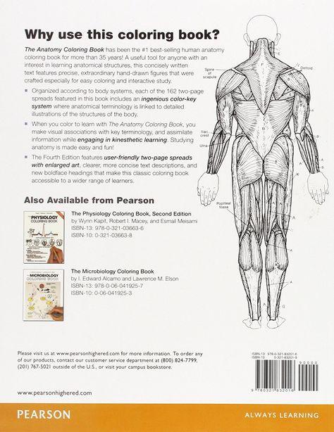 Anatomy Coloring Book Wynn Kapit
