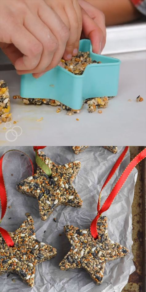 This DIY Bird Feeder is the perfect easy craft to do with your kids. Made with safe and easy to find ingredients, this homemade bird feeder is a project that I've loved to do with my kids since they were little and I know you will love to do with yours as well!