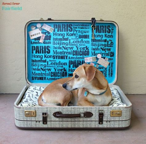 30 Great Ideas For Every Pet Owner Diy Dog Bed Pet Beds Old