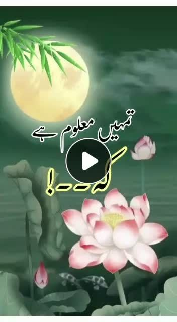 Sultanulashiqeen Sultanulashiqeen Has Created A Short Video On Likee With Music Original Sound Sultanulashiqeen Sultanulashiqeen M In 2020 Video Add Music Sufism