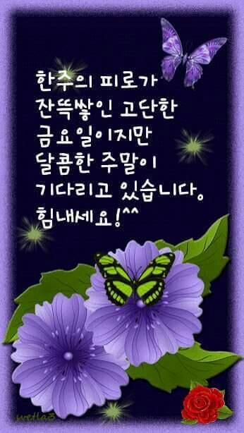 Image result for 금요일 아침인사