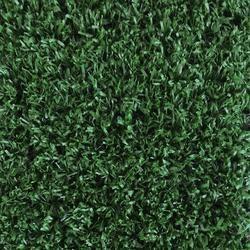 Foss Grasslands Indoor Outdoor Carpet 12 Ft Wide Artificial Grass Artificial Grass Carpet Leaf Photography