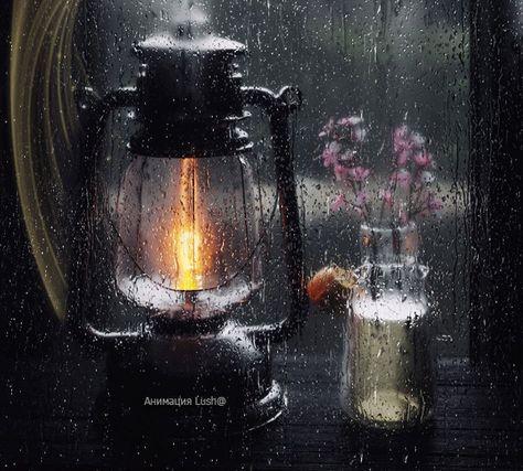 Dreamies De Ich Liebe Regen Regen Fenster Regen Bilder