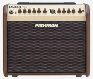 Fishman Loudbox Mini Acoustic Guitar Amp Amplifier Fender Guitar Amps Acoustic Guitar Amp Guitar Amp