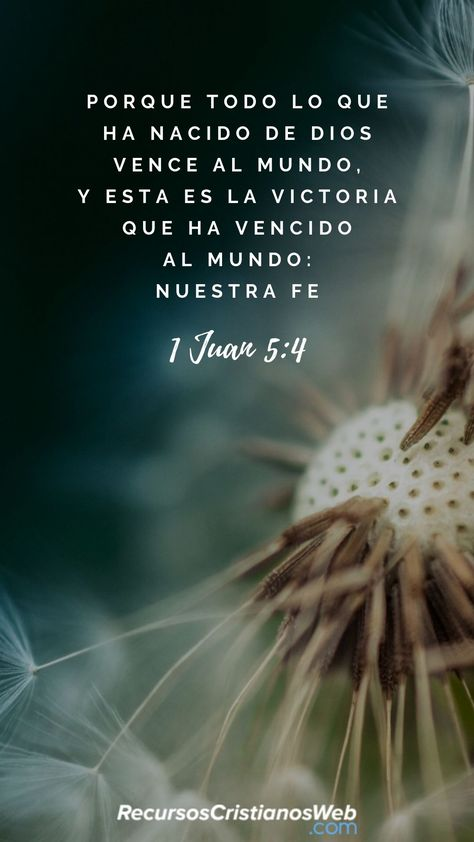 Porque todo lo que es nacido de Dios vence al mundo; y esta es la victoria que ha vencido al mundo, nuestra fe (1 Juan 5:4). #VersiculosBiblicos #VersiculosdelaBiblia #TextosBiblicos #CitasBiblicas #ImagenesCristianas #FrasesCristianas #PalabradeDios #Fe
