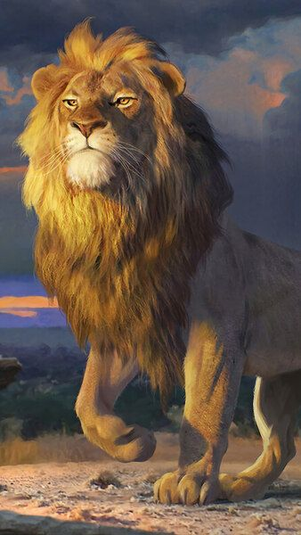 Simba The Lion King Movie 2019 4k Hd Mobile Smartphone And Pc Desktop Laptop Wallpaper 38 Cute Wallpapers For Android Hd Cute Wallpapers Iphone 6 Wallpaper