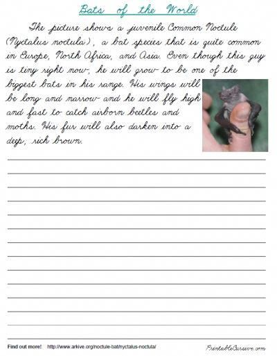 Free Cursive Handwriting Practice Bats Of The World 12 Page Packet From Printablecursive Handwriting Analysis Learn Handwriting Cursive Handwriting Practice Cursive writing practice worksheets 5th