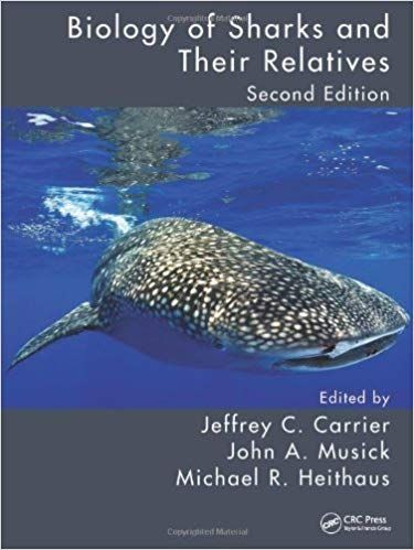 Shelved In Main Collection At Ql 638 6 B56 2012 Shark Week