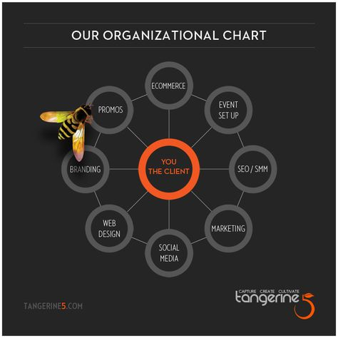 11 best Organizational Chart images on Pinterest Organizational - horizontal organization chart template