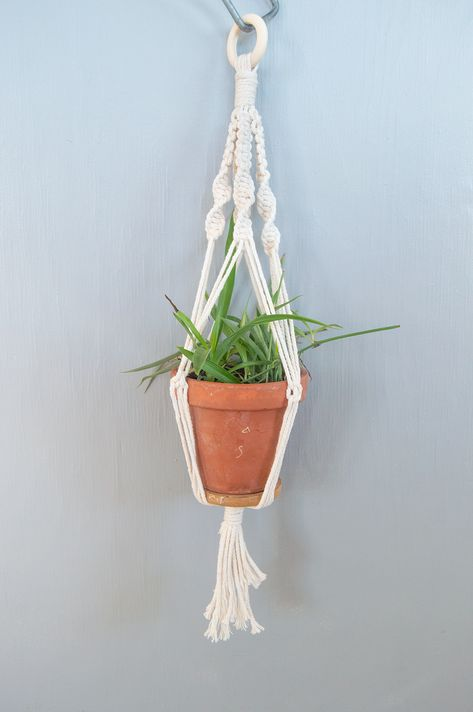 DIY Macrame Kit for Plant Hangers Have you ran out of places to put your plants? Create your own plant hanger! A perfect macrame kit for beginners or to give as a gift to your plant-loving friend. This Kit Includes: Enough material for 1 Hanging Plant Macrame Kit Macrame Rope (3mm, 4-strand natural cotton) Wooden Ring S-Hook for hanging Step-By-Step Instructions Perfect for beginners with only 3-types of knots needed! Sizing: These sizes work with a variety of plant pots and sizes. Small Plant H
