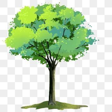 الأوراق الخضراء الأشجار النباتات الكرتون شجرة كبيرة الأوراق الخضراء كبيرة الأشجار Png وملف Psd للتحميل مجانا Tree Big Tree Herbs