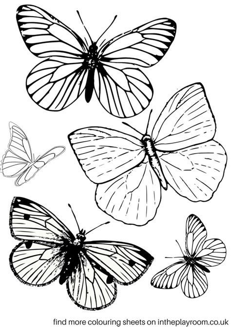 Printable Butterfly Template Coloring Page pdf - MrColoring   669x474