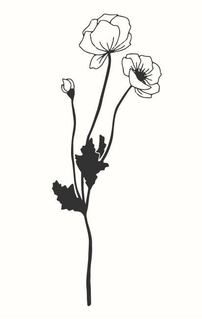 May Berry Stempel Mohnblume In 2020 Mit Bildern Illustration Blume Mohnblume Mohn