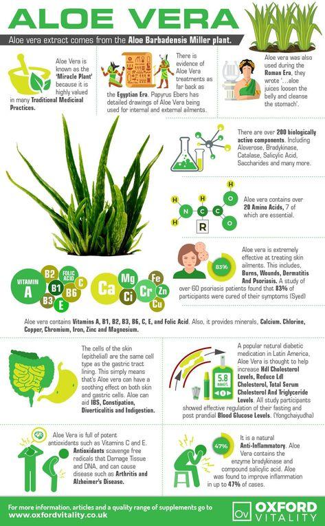Aloe Vera , Aloe Vera Supplements , Aloe Vera Tablets, Aloe Vera History, Health Benefits of Aloe Vera. everything you need to start your Weight Management Programme #stylenovi