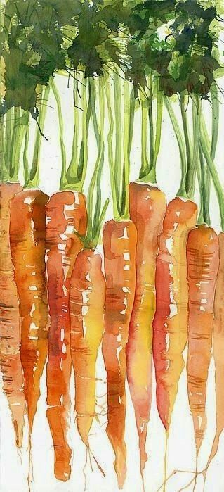 Carrots Watercolor Art Watercolour Inspiration Watercolor
